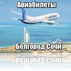Белгород Сочи авиабилеты