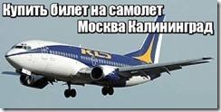Купить билет на самолет Москва Калининград
