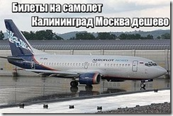 Билеты на самолет Калининград Москва дешево
