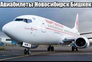 Купить билет на самолет новосибирск бишкек дешево билеты в крым на самолете из москвы по 7000
