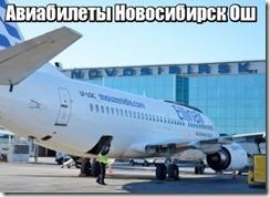 Авиабилеты Новосибирск Ош