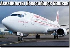 Авиабилеты Новосибирск Бишкек