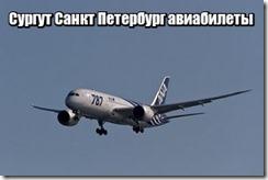 Сургут Санкт Петербург авиабилеты