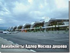 Авиабилеты Адлер Москва дешево
