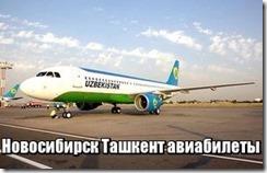 Новосибирск Ташкент авиабилеты
