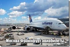 Москва Франкфурт авиабилеты