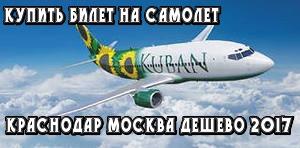 где купить билеты на самолет официальный сайт