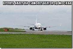 Купить билет на самолет Белгород Москва 2017