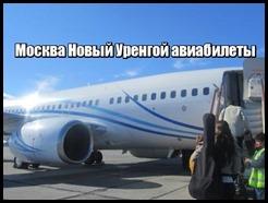 Москва Новый Уренгой авиабилеты