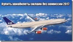 Купить авиабилеты онлайн без комиссии 2017