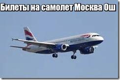 Билеты на самолет Москва Ош