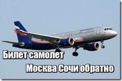 Билет самолет Москва Сочи обратно