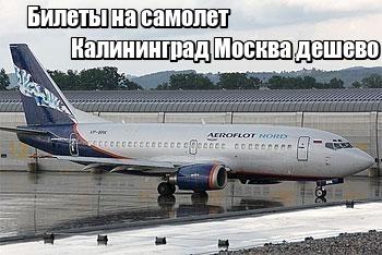 Купить билет на самолет калининград москва дешево аэрофлот цены на билеты самолет москва ижевск