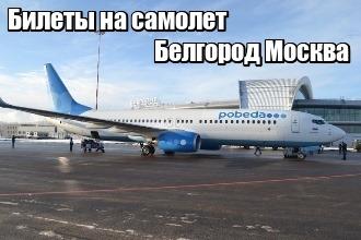 Купить авиабилеты аэропорт белгород купить авиабилет дешево до махачкалы